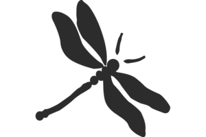 Dragonfly PNG Transparent HD Photo PNG Clip art