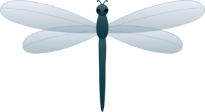 Dragonfly PNG Transparent Picture PNG icon