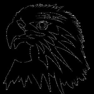 Eagle Head PNG Image PNG Clip art