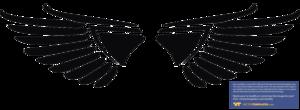 Eagle Symbol PNG HD PNG Clip art