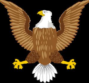 Eagle Symbol PNG Image PNG Clip art