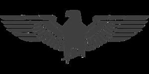 Eagle Symbol Transparent PNG PNG Clip art