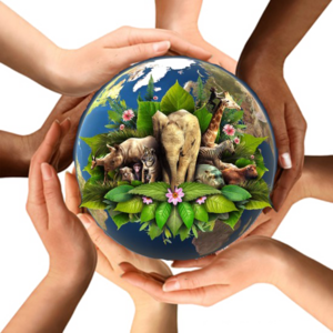 Earth In Hands PNG Picture PNG Clip art