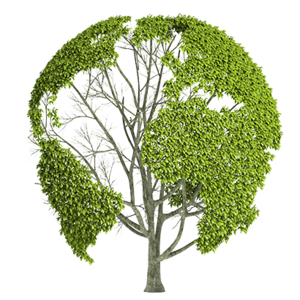 Earth Nature PNG Image PNG image