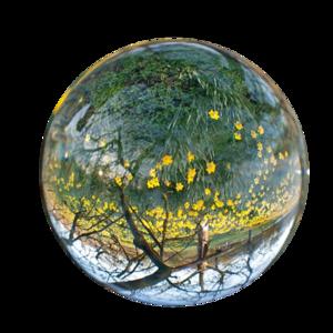 Earth Nature PNG Transparent PNG Clip art