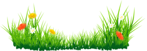 Easter Grass PNG PNG Clip art