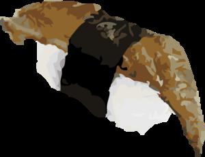 Eel Sushi PNG File PNG Clip art