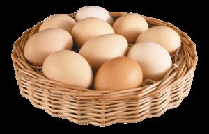 Eggs PNG File PNG Clip art