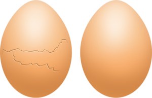 Eggs PNG Photo PNG Clip art