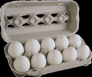 Eggs PNG Photos PNG Clip art
