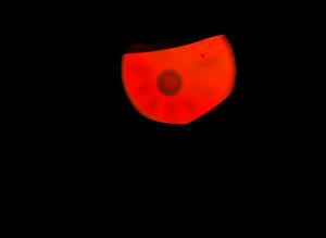 Evil PNG Pic PNG Clip art