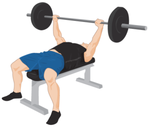 Exercise PNG Clipart PNG Clip art