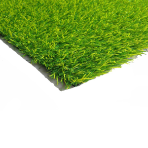 Fake Grass PNG HD PNG Clip art