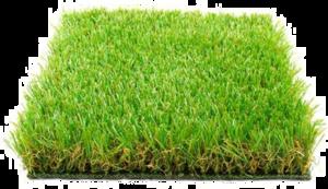 Fake Grass PNG Image PNG Clip art