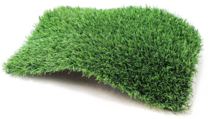 Fake Grass PNG Picture PNG Clip art