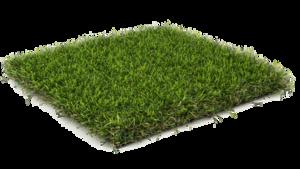 Fake Grass PNG Transparent PNG Clip art