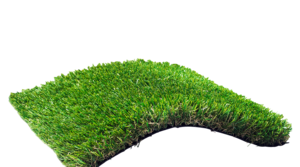 Fake Grass Transparent Images PNG PNG Clip art