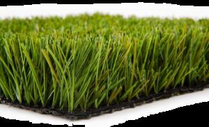 Fake Grass Transparent PNG PNG Clip art