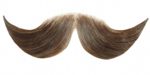 Fake Moustache PNG HD PNG Clip art