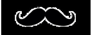 Fake Moustache PNG Image PNG Clip art
