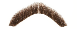Fake Moustache PNG Pic PNG Clip art
