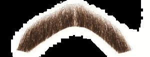 Fake Moustache PNG Pic PNG Clip art