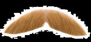 Fake Moustache PNG Transparent Image PNG Clip art