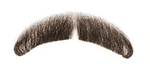 Fake Moustache Transparent Background PNG Clip art