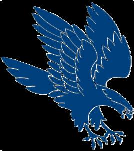 Falcon PNG File PNG Clip art