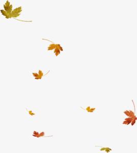 Falling Leaf PNG File PNG Clip art