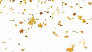 Falling Leaf Transparent PNG PNG Clip art