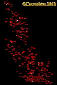 Falling Petals PNG Pic PNG Clip art