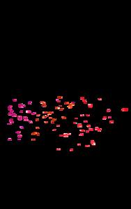 Falling Rose Petals PNG Background Image PNG Clip art