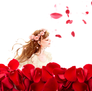 Falling Rose Petals PNG Photos PNG Clip art