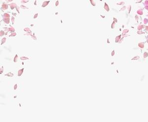 Falling Rose Petals PNG Transparent Image PNG Clip art