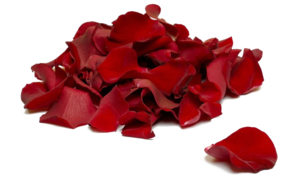 Falling Rose Petals Transparent Background PNG Clip art