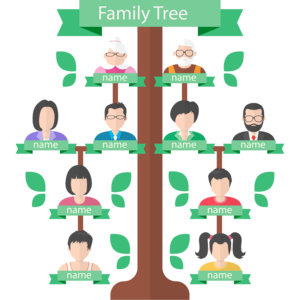 Family Tree Background PNG PNG Clip art