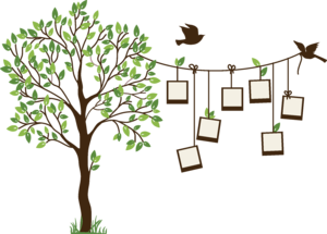 Family Tree PNG Background Image PNG icon