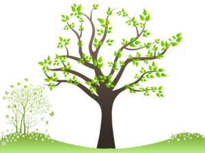 Family Tree PNG Free Download PNG icon
