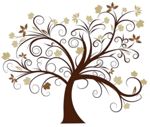 Family Tree PNG HD PNG Clip art