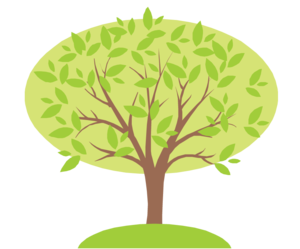 Family Tree PNG Photo PNG Clip art