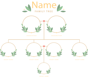 Family Tree PNG Photos PNG Clip art