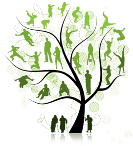 Family Tree PNG Pic PNG Clip art