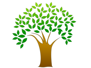 Family Tree PNG Transparent Image PNG Clip art