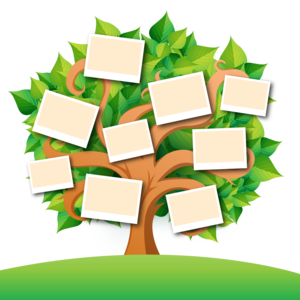 Family Tree Transparent Images PNG PNG Clip art