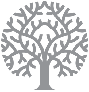 Family Tree Transparent PNG PNG Clip art