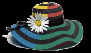 Fancy Hat PNG Image PNG Clip art