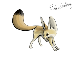 Fennec Fox Transparent PNG PNG Clip art
