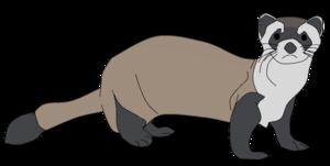 Ferret PNG Clipart PNG Clip art