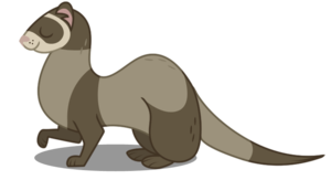 Ferret Transparent Background PNG Clip art